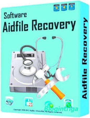Aidfile Recovery Software Professional 3.6.3.2 ENG