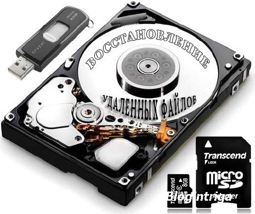 Raise Data Recovery for FAT / NTFS 5.10
