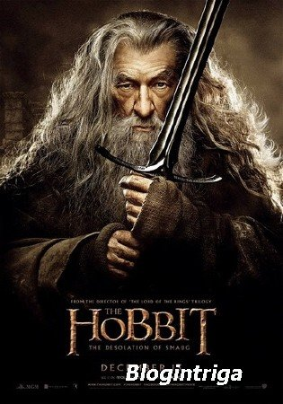Хоббит: Пустошь Смауга / The Hobbit: The Desolation of Smaug (2013) WEBRip