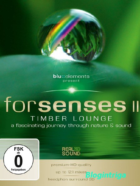 Для чувств 2 / Forsenses II (2011) BLURay