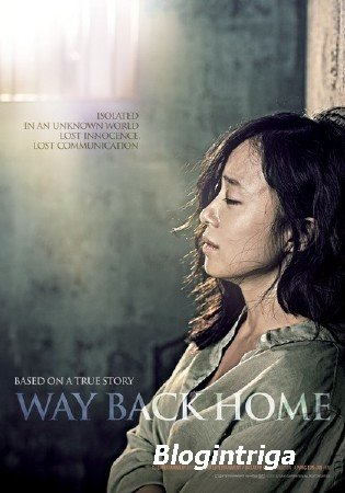 Путь домой / Way Back Home (2013/BDRip)