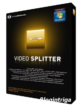 SolveigMM Video Splitter 5.2.1602.24 Business Edition DC 03.03.2016