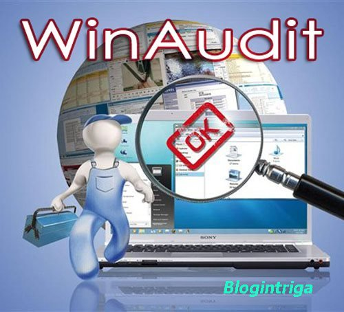 WinAudit 3.1.0.0 Stable Portable