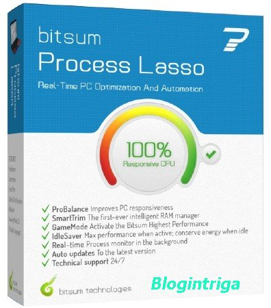 Process Lasso Pro 8.9.8.14 Final + Portable