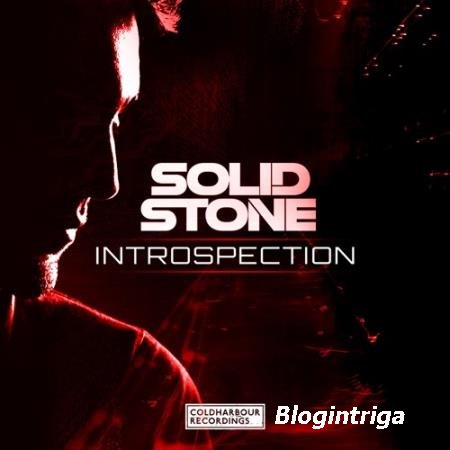 Solid Stone - Introspection (2016)