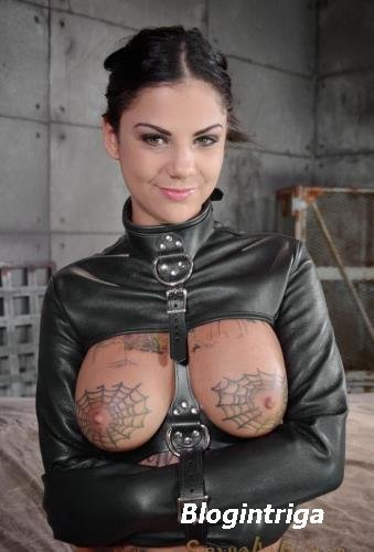 Bonnie Rotten, Matt Williams, Owen Gray - AVN winner Bonnie Rotten bound in ...
