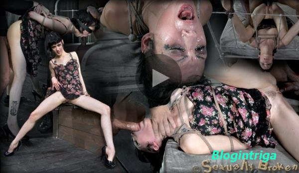 Asphyxia Noir, Matt Williams, Jack Hammer - Asphyxia Noir Double Category 5 ...