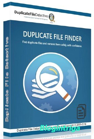 Duplicate File Detective 6.0.84 Professional Edition