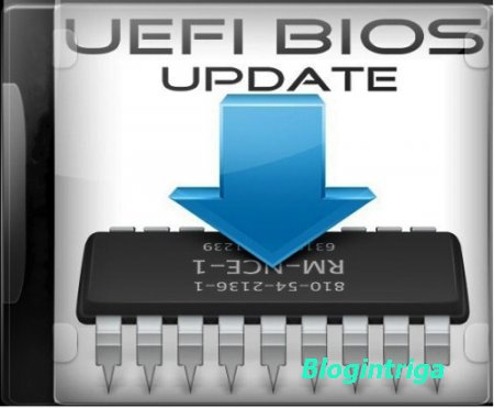 UEFI BIOS Updater 1.62 Portable