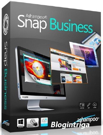 Ashampoo Snap Business 9.0.2 Final