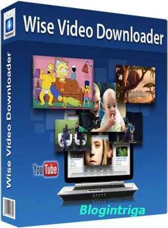 Wise Video Downloader 2.43.93 + Portable