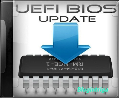 UEFI BIOS Updater 1.65.3 Portable