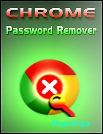 Chrome Password Remover 3.0 + Portable