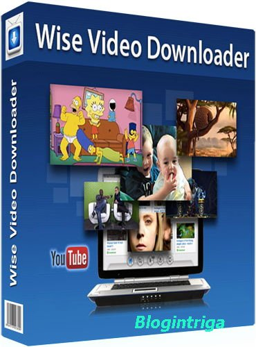 Wise Video Downloader 2.45.96 + Portable