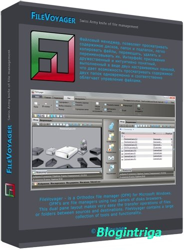 FileVoyager 17.03.25.0 + Portable