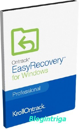 Ontrack EasyRecovery Professional / Technician 12.0.0.2