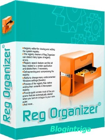 Reg Organizer 8.05 Final Portable