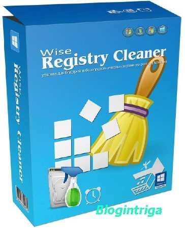 Wise Registry Cleaner Pro 9.55 Build 625 + Portable