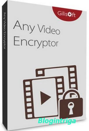 Any Video Encryptor 2.0.0 + Rus