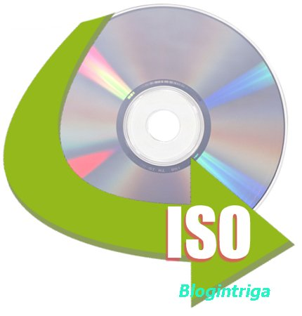 AnyToISO Professional 3.9.0 Build 600 + Portable