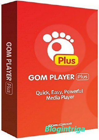 GOM Player Plus 2.3.31.5290
