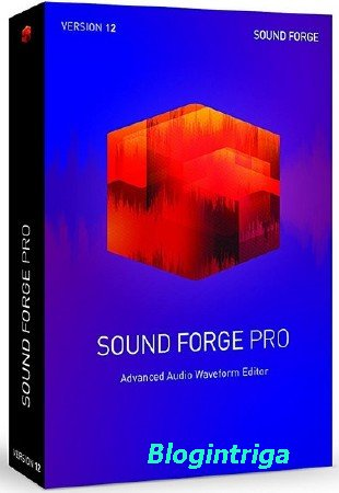 MAGIX Sound Forge Pro 12.1.0.170 RePack by PooShock