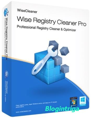 Wise Registry Cleaner Pro 10.1.8.679 + Portable
