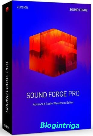 MAGIX SOUND FORGE Pro 13.0.0.46