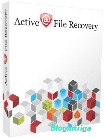 Active File Recovery 19.0.8