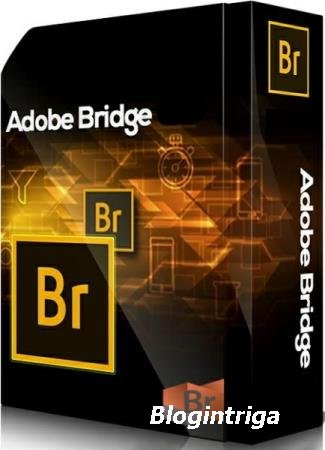 Adobe Bridge 2020 10.0.1.126 by m0nkrus
