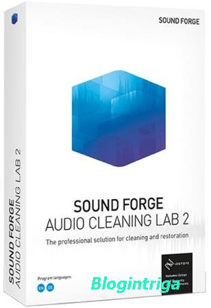 MAGIX SOUND FORGE Audio Cleaning Lab 24.0.0.8 Portable by punsh